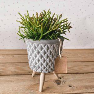 cement pot vasi per piante